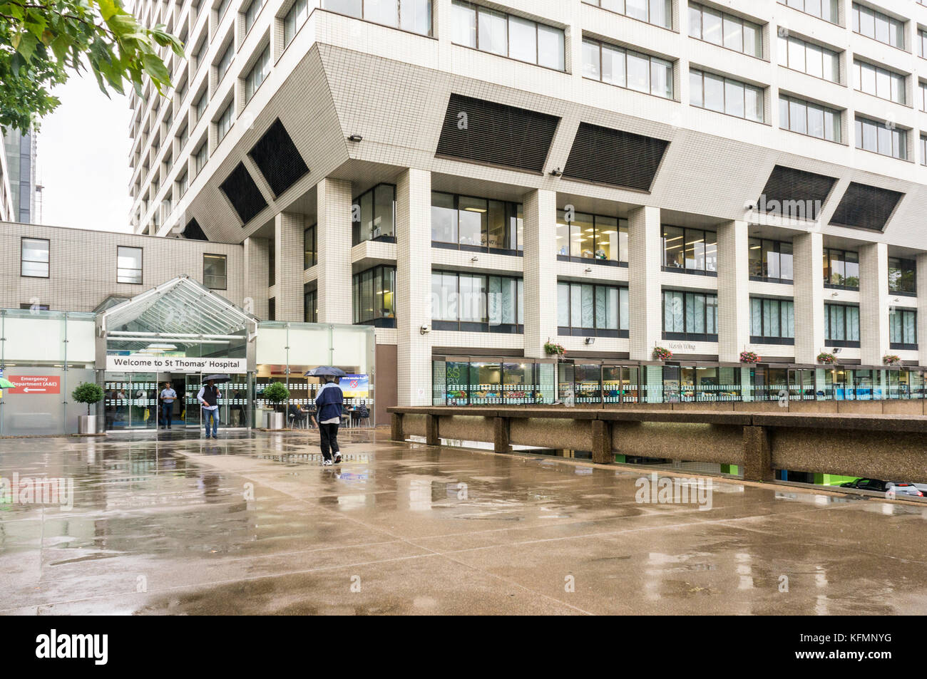 St Thomas Hospital, Westminster, London, England, GB, UK - Stock Image