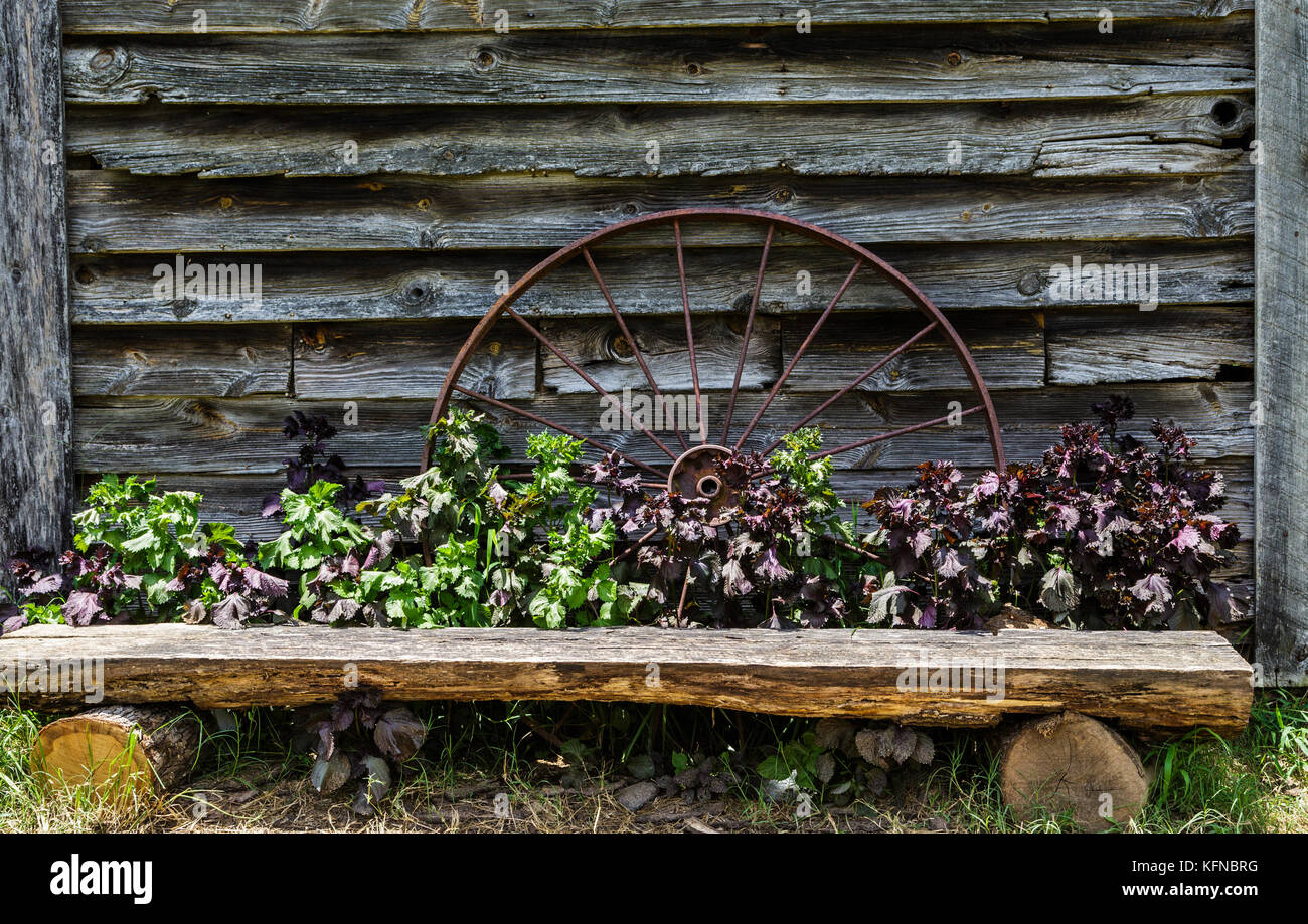 Pleasant Rustic Bench Flowers Stock Photos Rustic Bench Flowers Dailytribune Chair Design For Home Dailytribuneorg