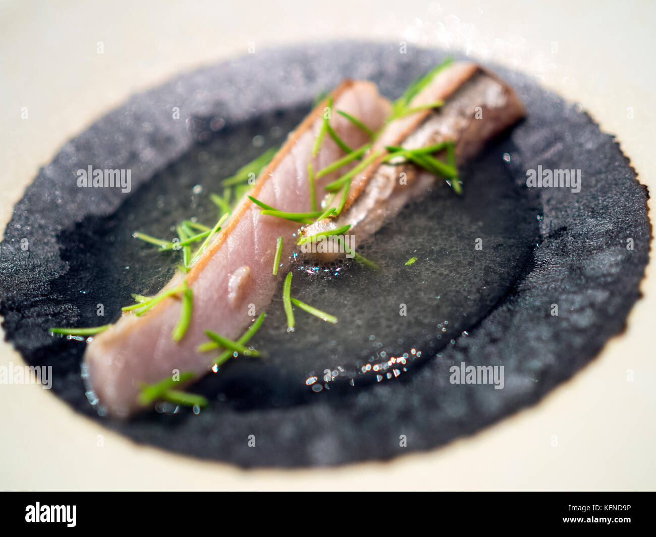 Mackerel with pine shoots cooked by Pai Holmberg from Bifångst, a two seat restaurant in Gothenberg. - Stock Image