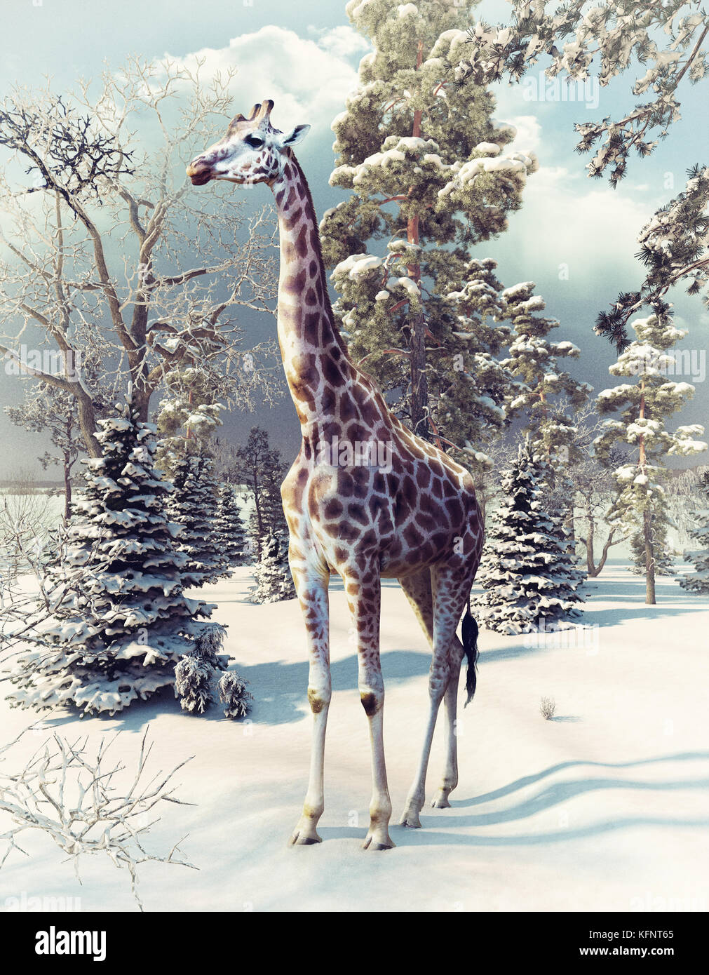 giraffe in the winter forest. 3d render elements and photo mixed. - Stock Image