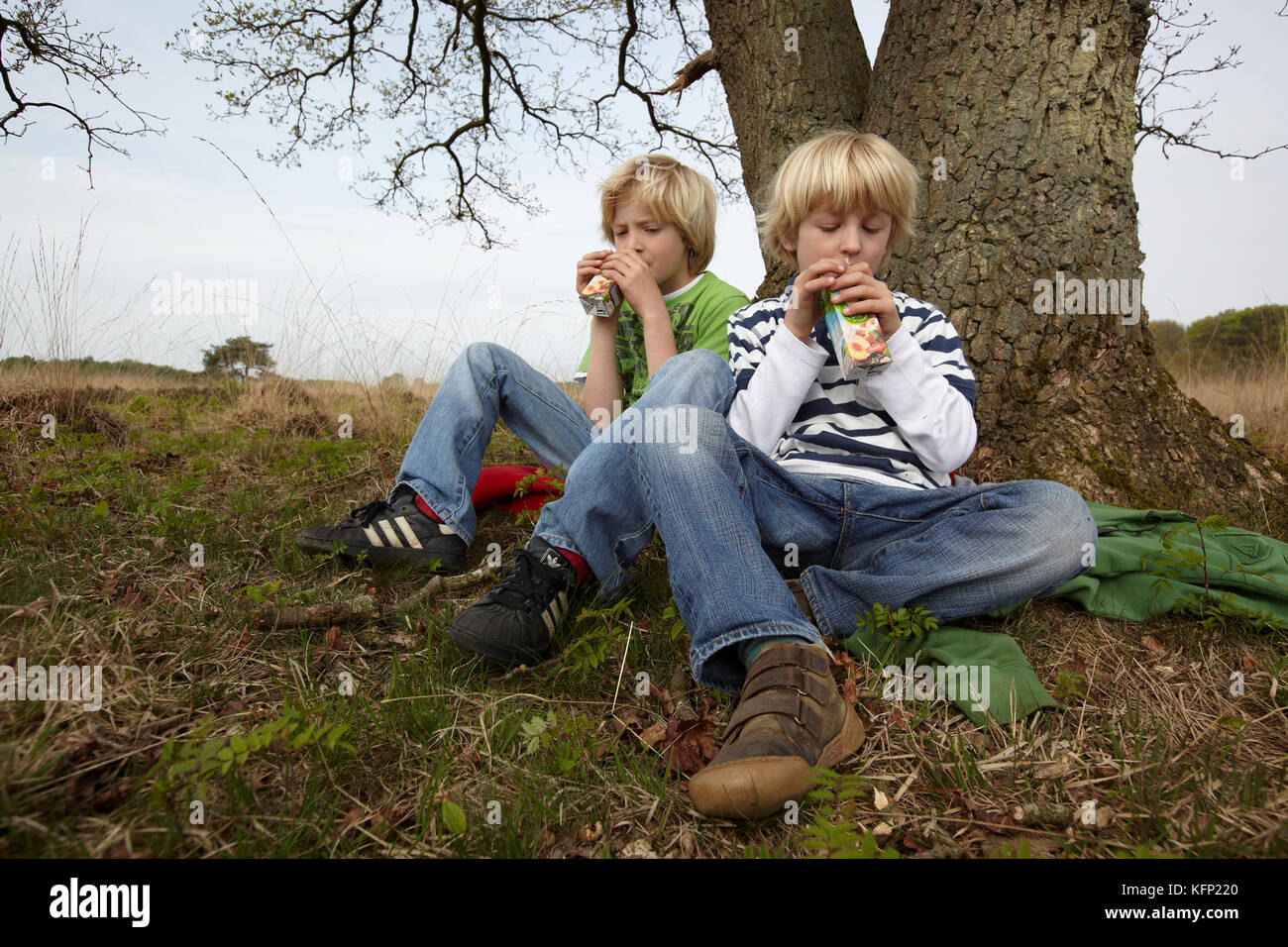 Two young blond haired boys sitting on ground, leaning against a tree drinking with straw from a small fruit juice - Stock Image