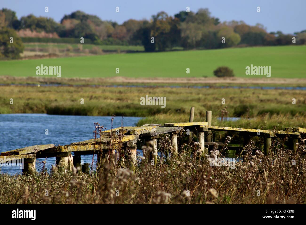 A rickety dangerous home made bridge across the saltmarsh by the River Deben, Waldringfield, Suffolk. - Stock Image
