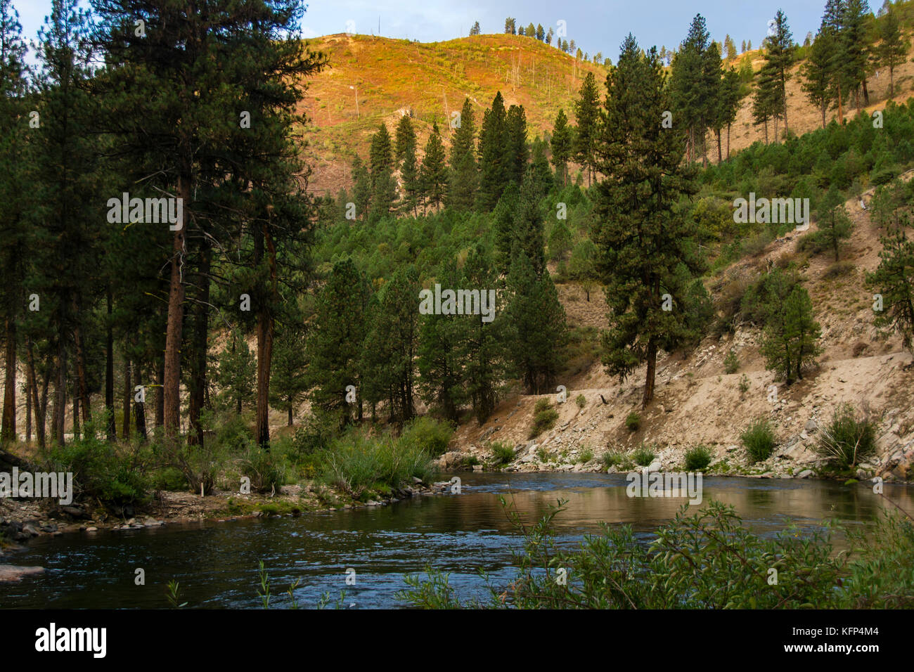 Scenic view of North Fork of the Boise River in Idaho, USA - Stock Image