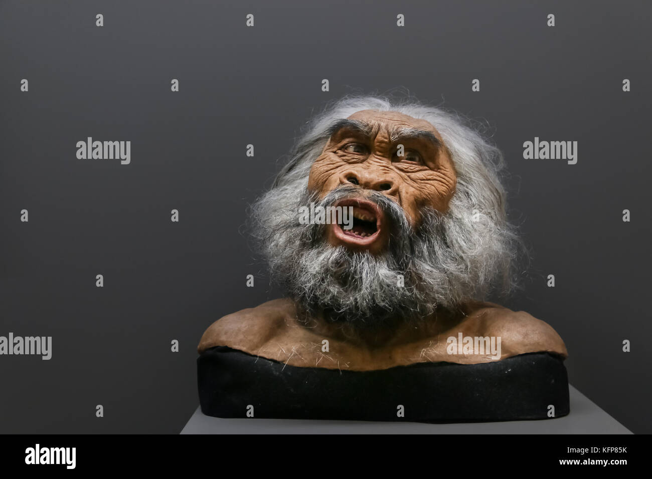 Wax face of primitive person at a historical museum - Stock Image