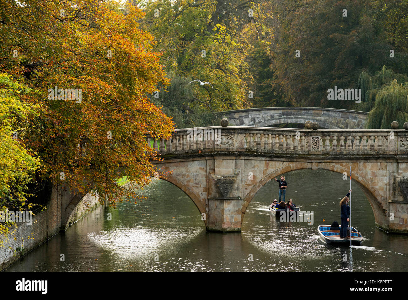 Cambridge, UK. 31st Oct, 2017. Autumn colours on the River Cam in the centre of Cambridge looking towards Clare - Stock Image