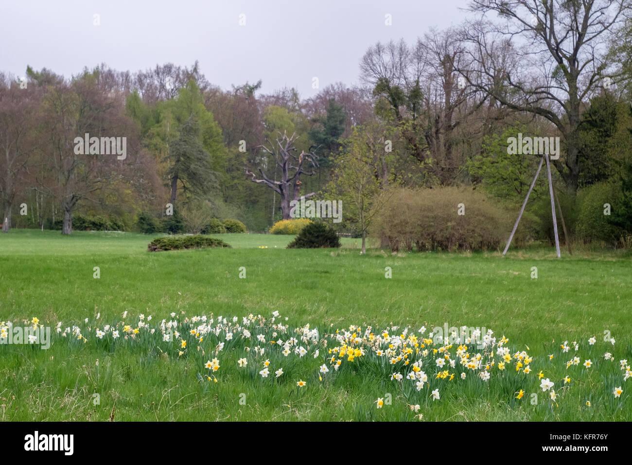 Landschaftspark Degenershausen - Stock Image