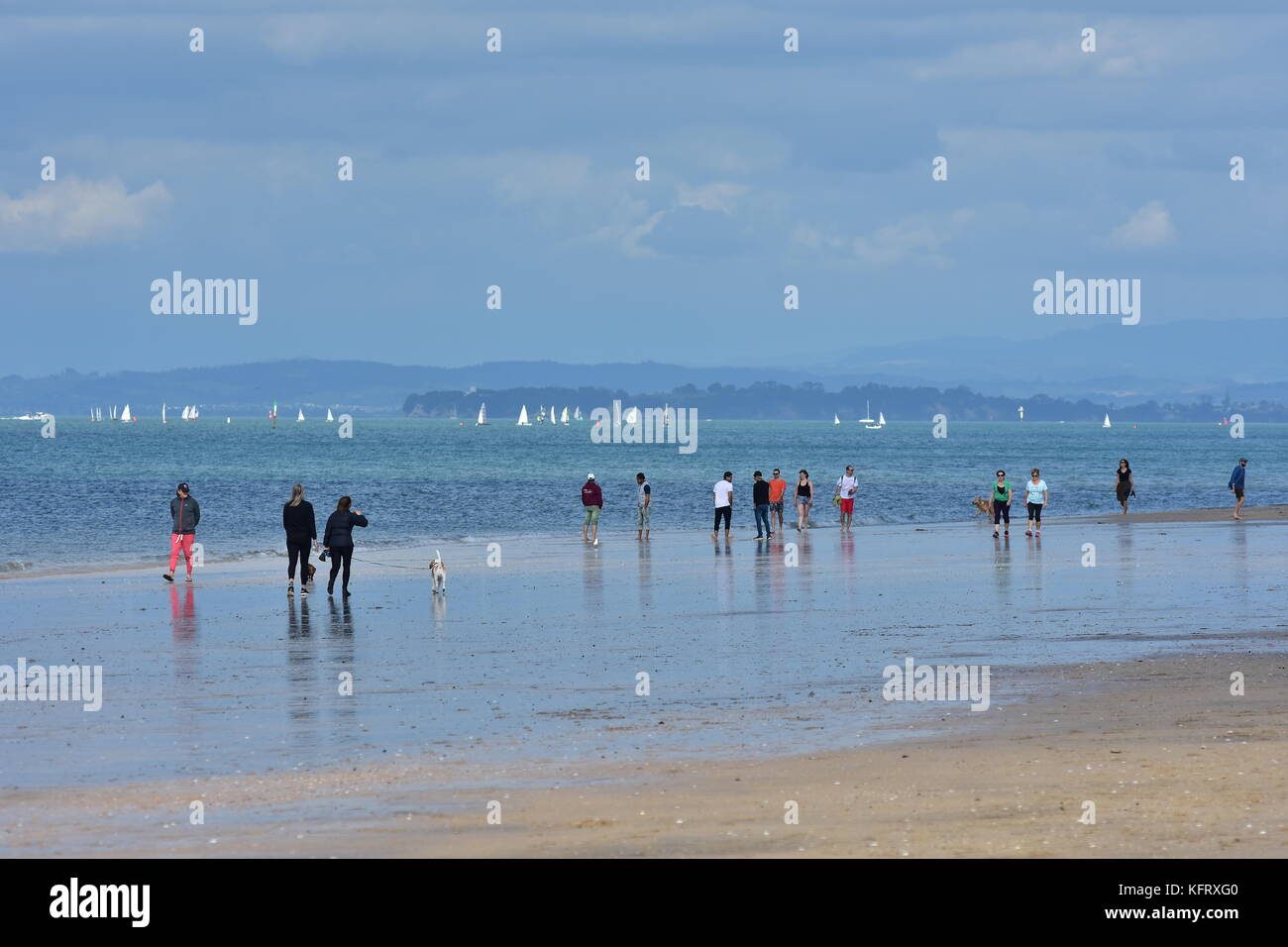 People walking on flat sandy ocean beach of Takapuna in Auckland on cloudy day. Stock Photo