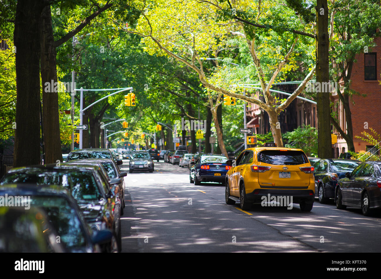 NEW YORK CITY - AUGUST 27, 2017:  A NYC yellow cab drives along a leafy street in Park Slope, Brooklyn. - Stock Image