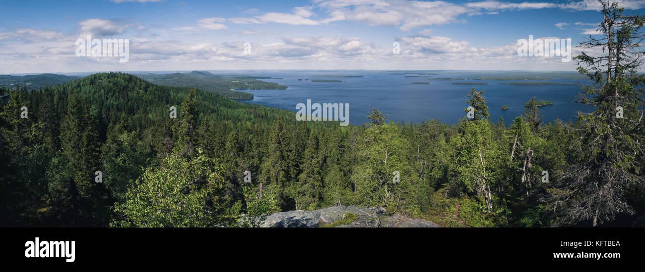Panorama view seen from Ukko-Koli over the lake Pielinen in Koli National Park in Finland - Stock Image