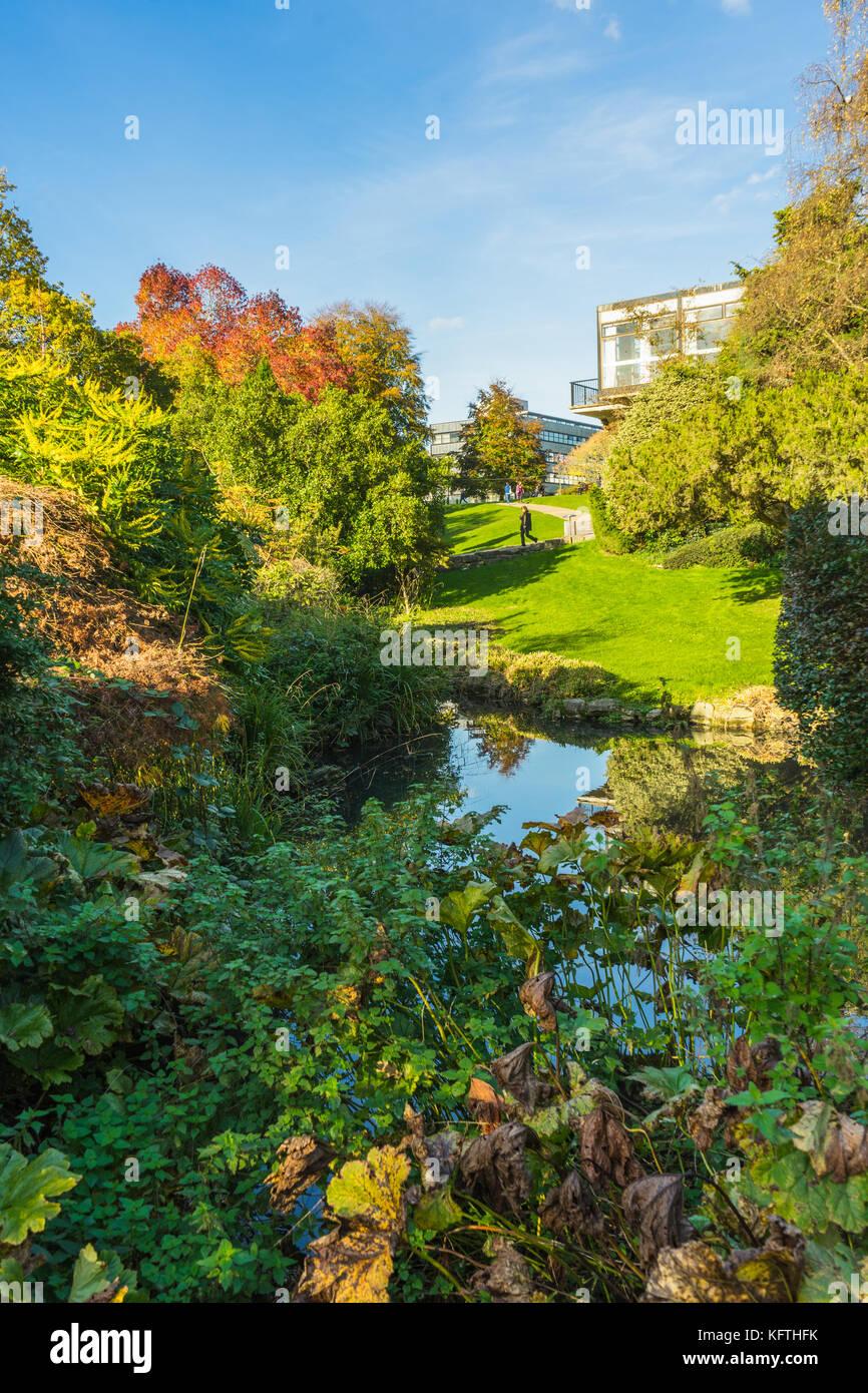 View over the University of Southampton Highfeld Campus gardens during autumn 2017, Southampton, UK - Stock Image