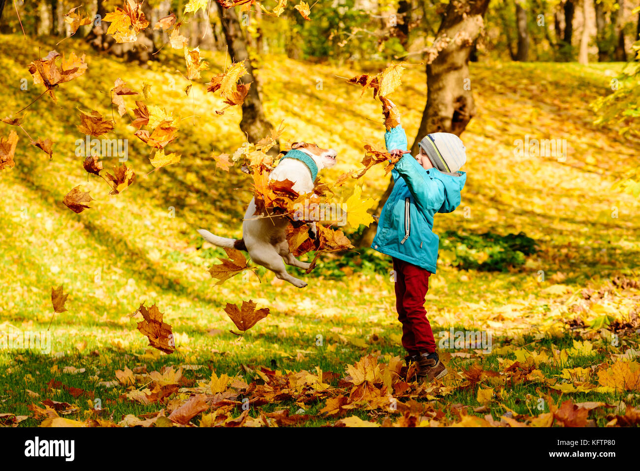 Family fun time at autumn park with kid and pet dog - Stock Image