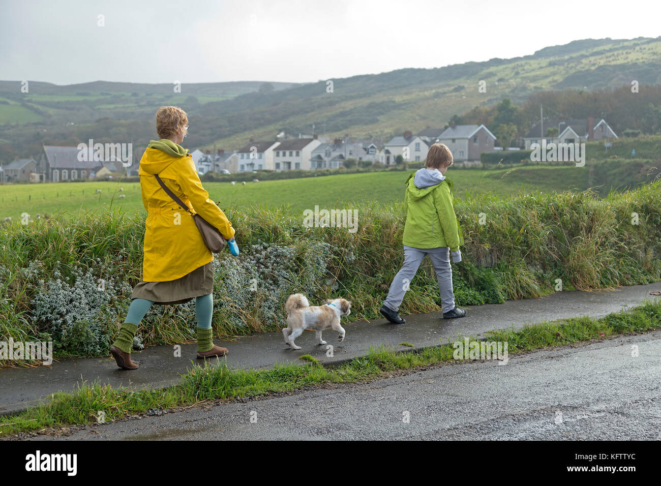 family walking dog, Ballintoy, Co. Antrim, Northern Ireland - Stock Image
