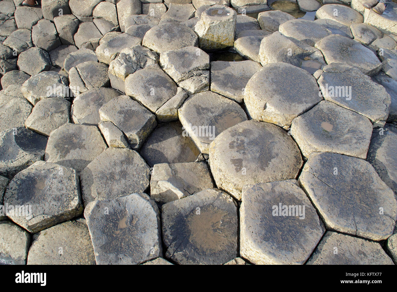 basaltic columns, Giants Causeway, Bushmills, Co. Antrim, Northern Ireland - Stock Image