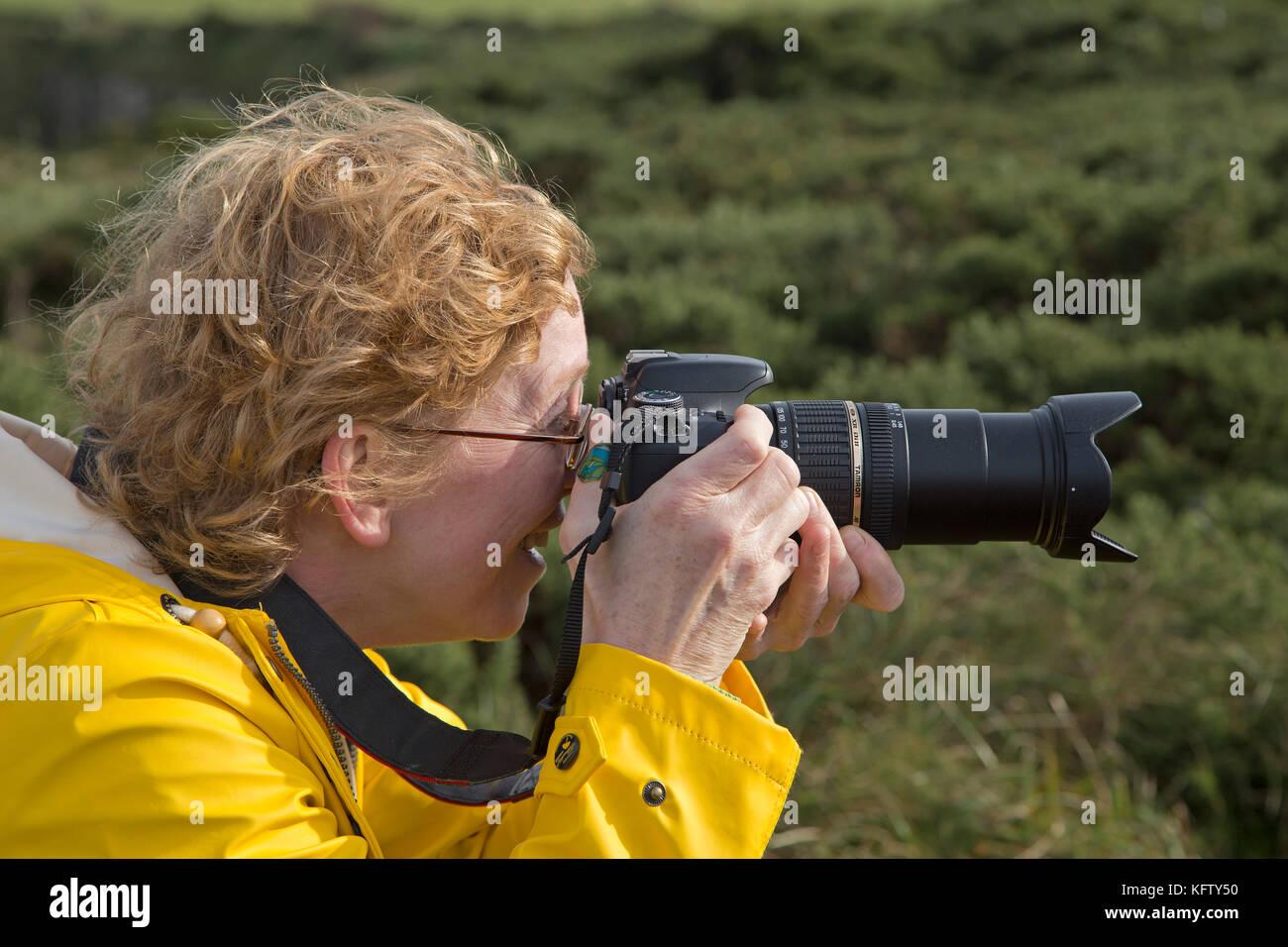 woman taking photos, Giants Causeway, Bushmills, Co. Antrim, Northern Ireland - Stock Image