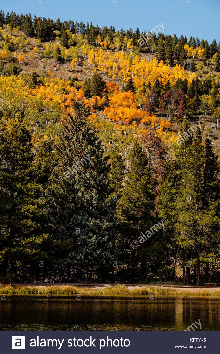 Autumn colors on the mountainsides of Sprague Lake, Rocky Mountain National Park, Colorado - Stock Image