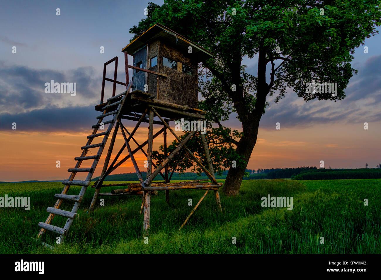 Harzlandschaft Hochsitz in der blauen Stunde - Stock Image