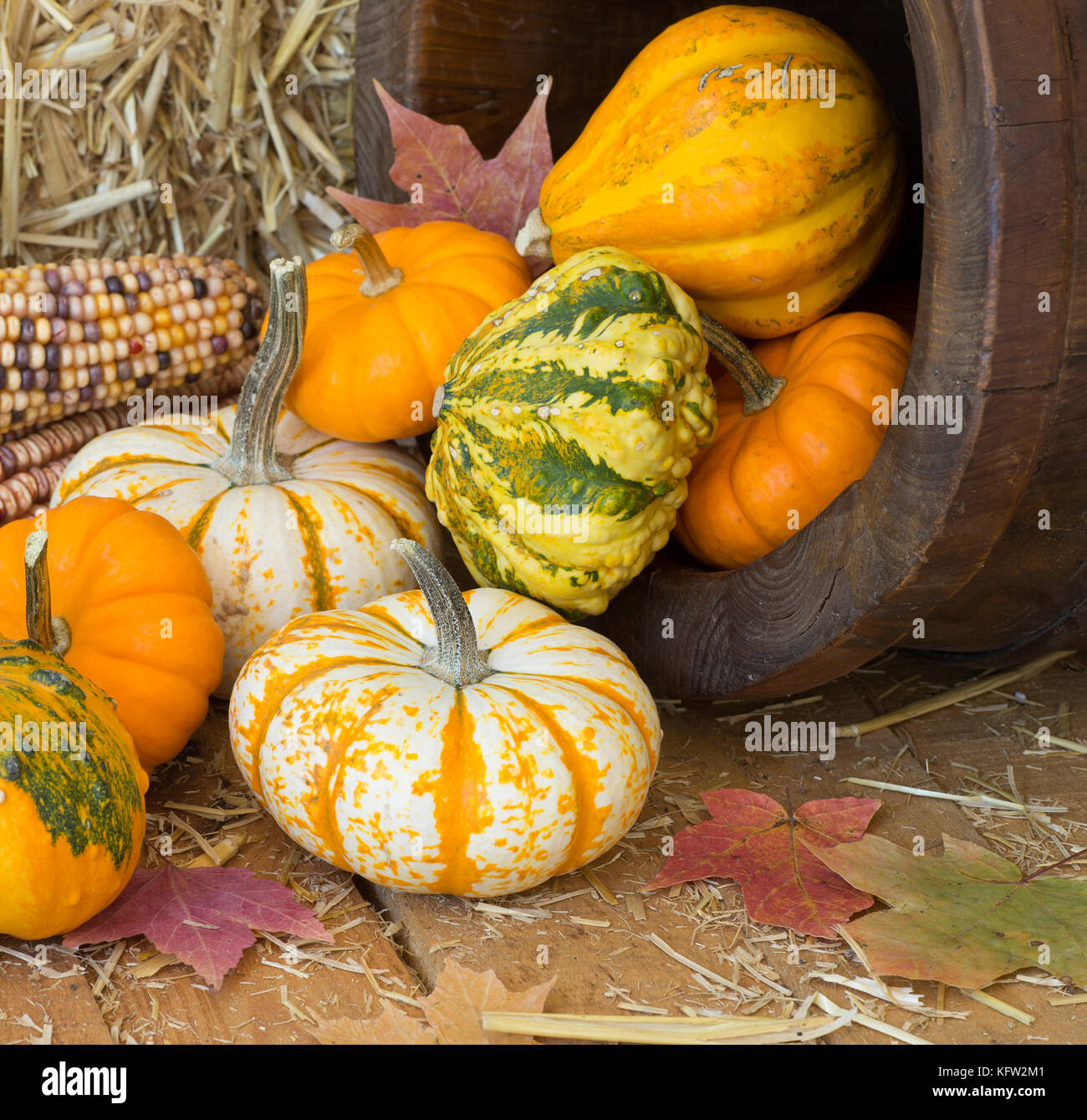 Hay Bale Fall Decoration Stock Photos & Hay Bale Fall