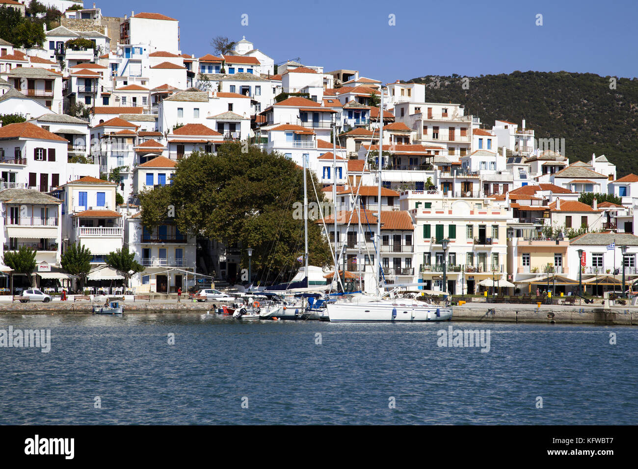Skopelos town viewed from the shore, Jazz café underneath enormous old plane tree, Sporades, Greece - Stock Image