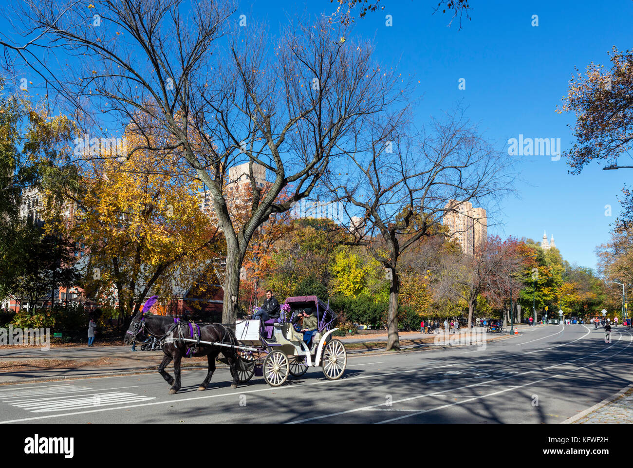 Horse and carriage ride on West Drive in Central Park, New York City, NY, USA - Stock Image