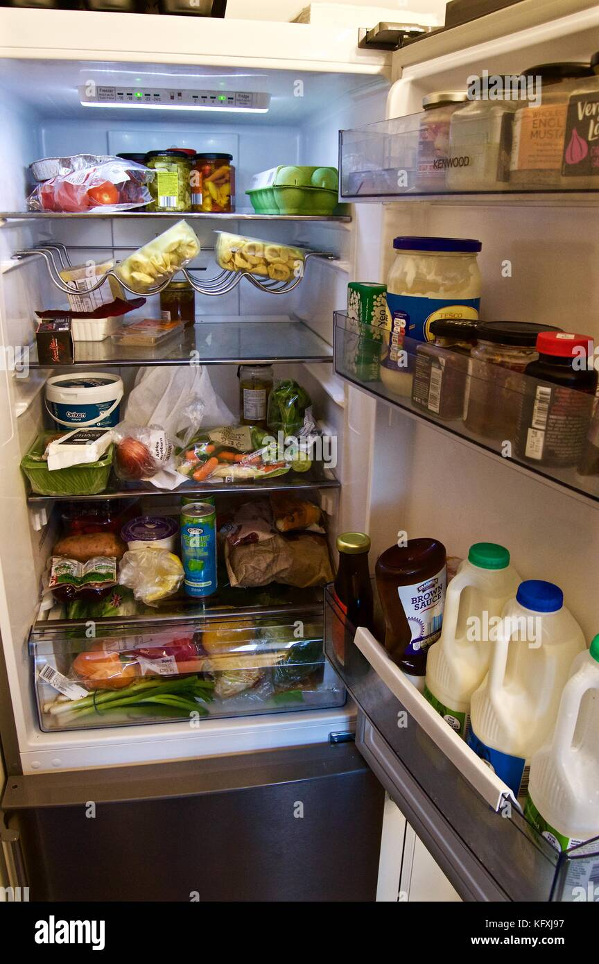 Packed fridge containing food items and drinks including milk, typical UK fridge - Stock Image