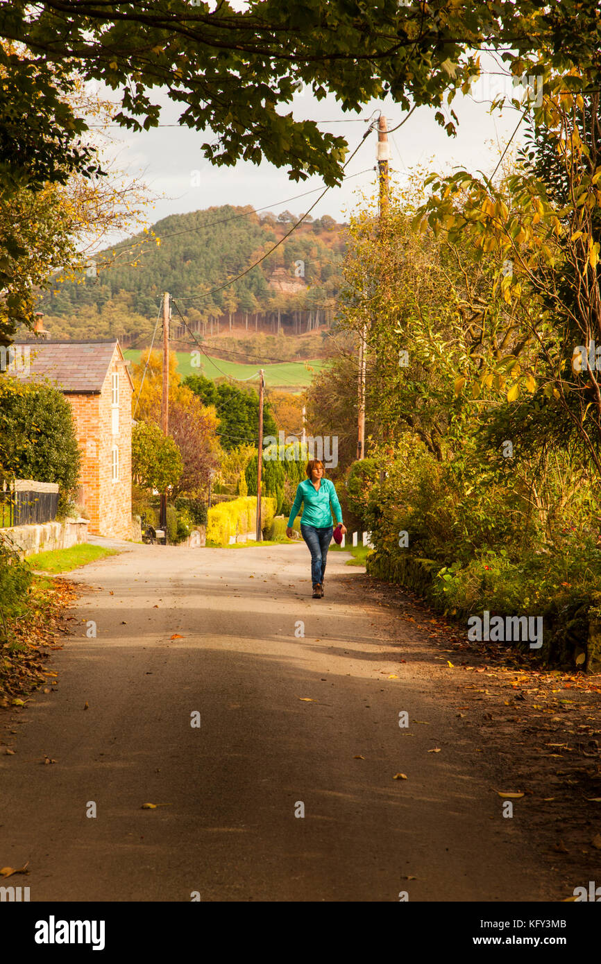 Woman walking through the Cheshire countryside in the village of Brown Knowl  near Bickerton Hills in the Autumn - Stock Image