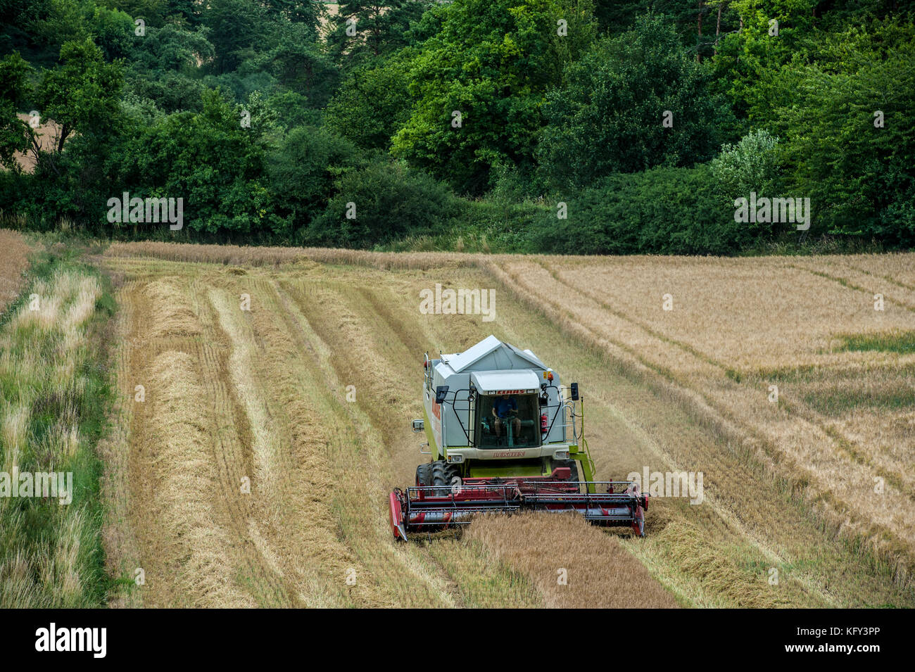 GERMANY, BAVARIA,. A combine harvester working on a small field near Obereisbach in the Rhoen Mountains - Stock Image