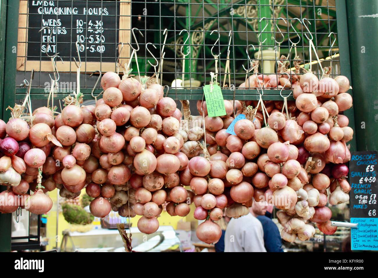 Bunches of ripe onions hanging in London, Borough market. - Stock Image