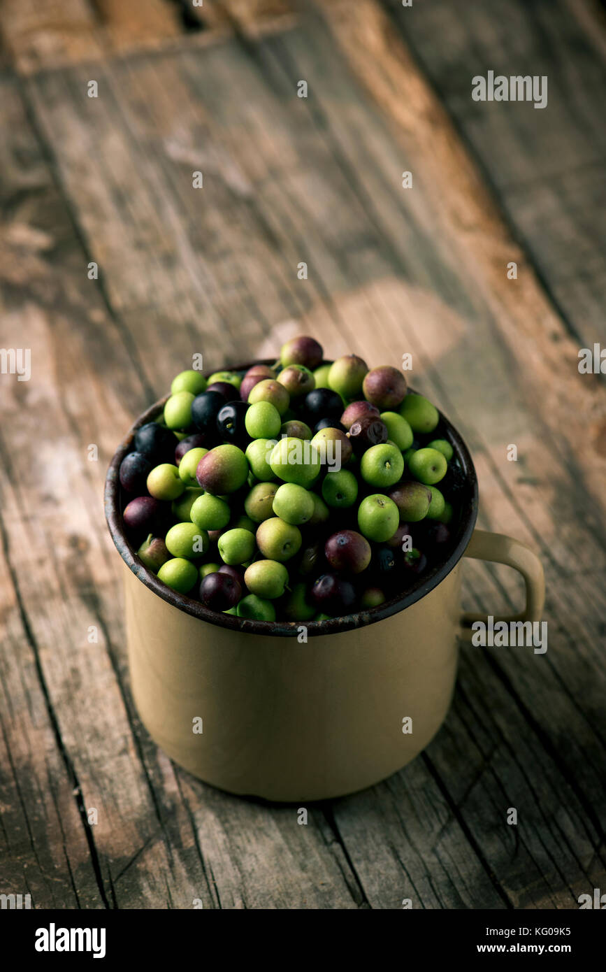 closeup of a handled enamelware pot full of arbequina olives from Catalonia, Spain, on a wooden rustic table - Stock Image