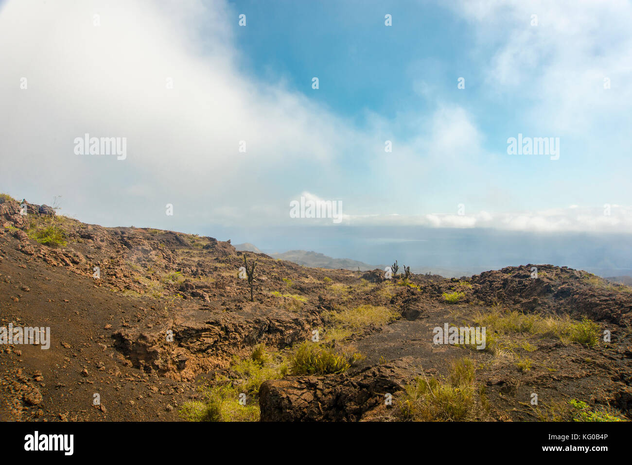 south america ecuador Galapagos isla isabela travel sierra negra - Stock Image