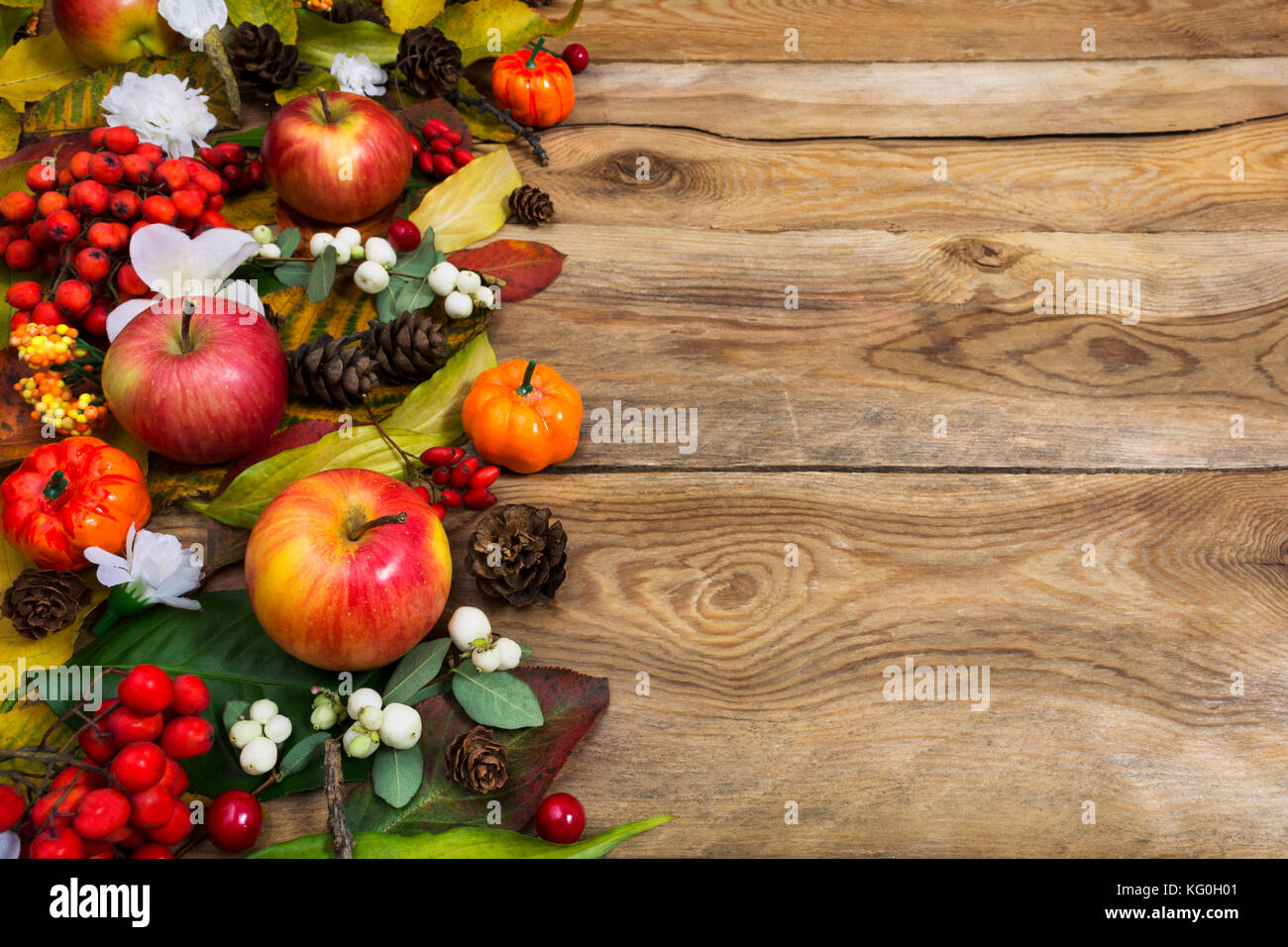 Thanksgiving Or Fall Greeting Background With Pumpkins Apples Red And White Berries On The Rustic Wooden Table Copy Space