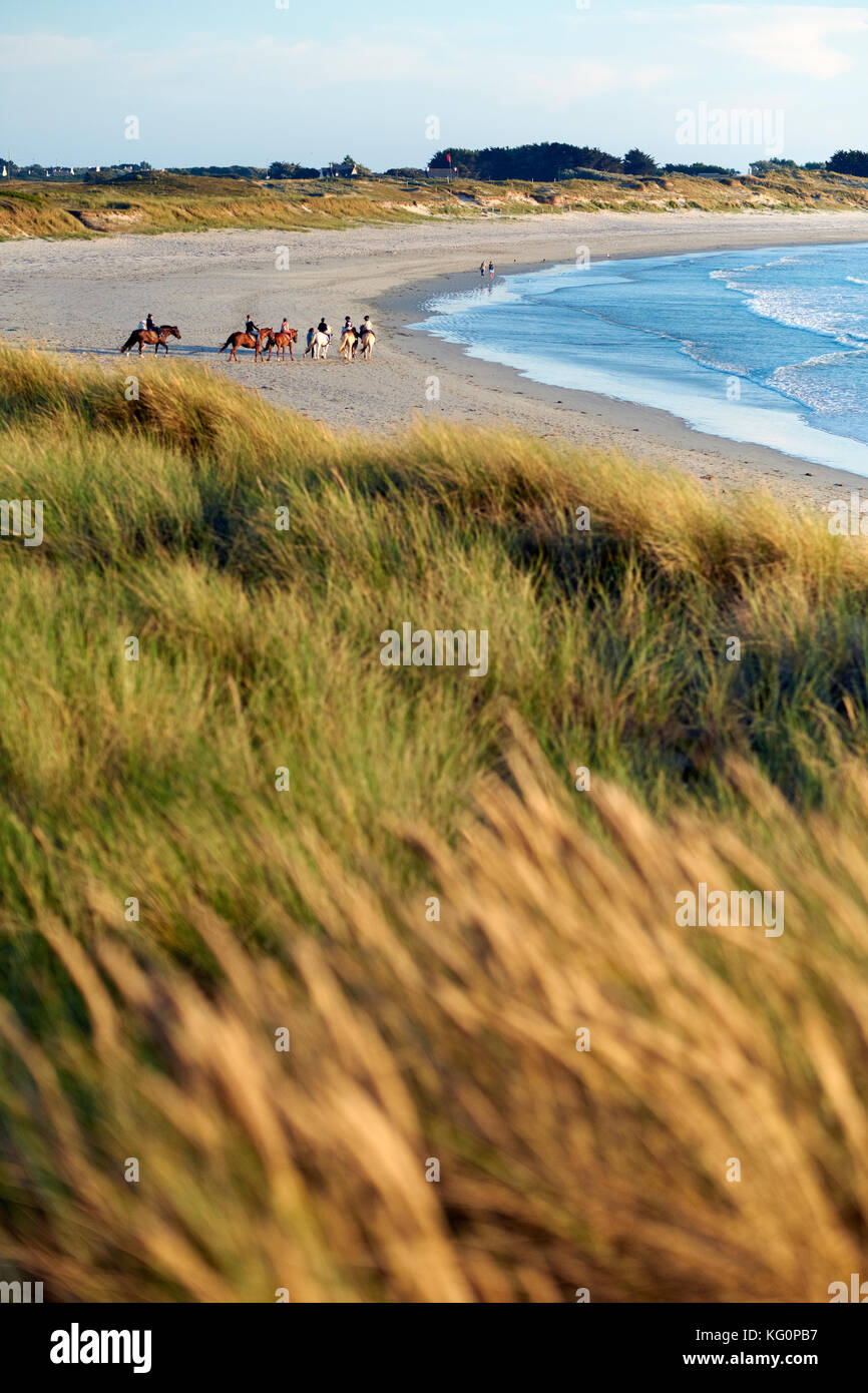 Horse riding on a Finistere beach in Brittany France. - Stock Image