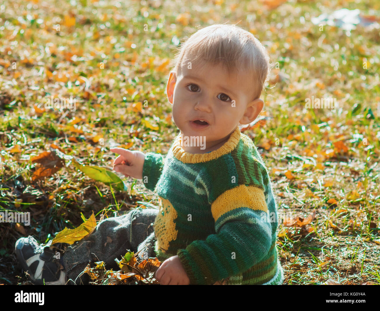 A little 1 year old baby boy sitting on autumn ground park on sunset. Child smiling and laughting, Adorable child. - Stock Image