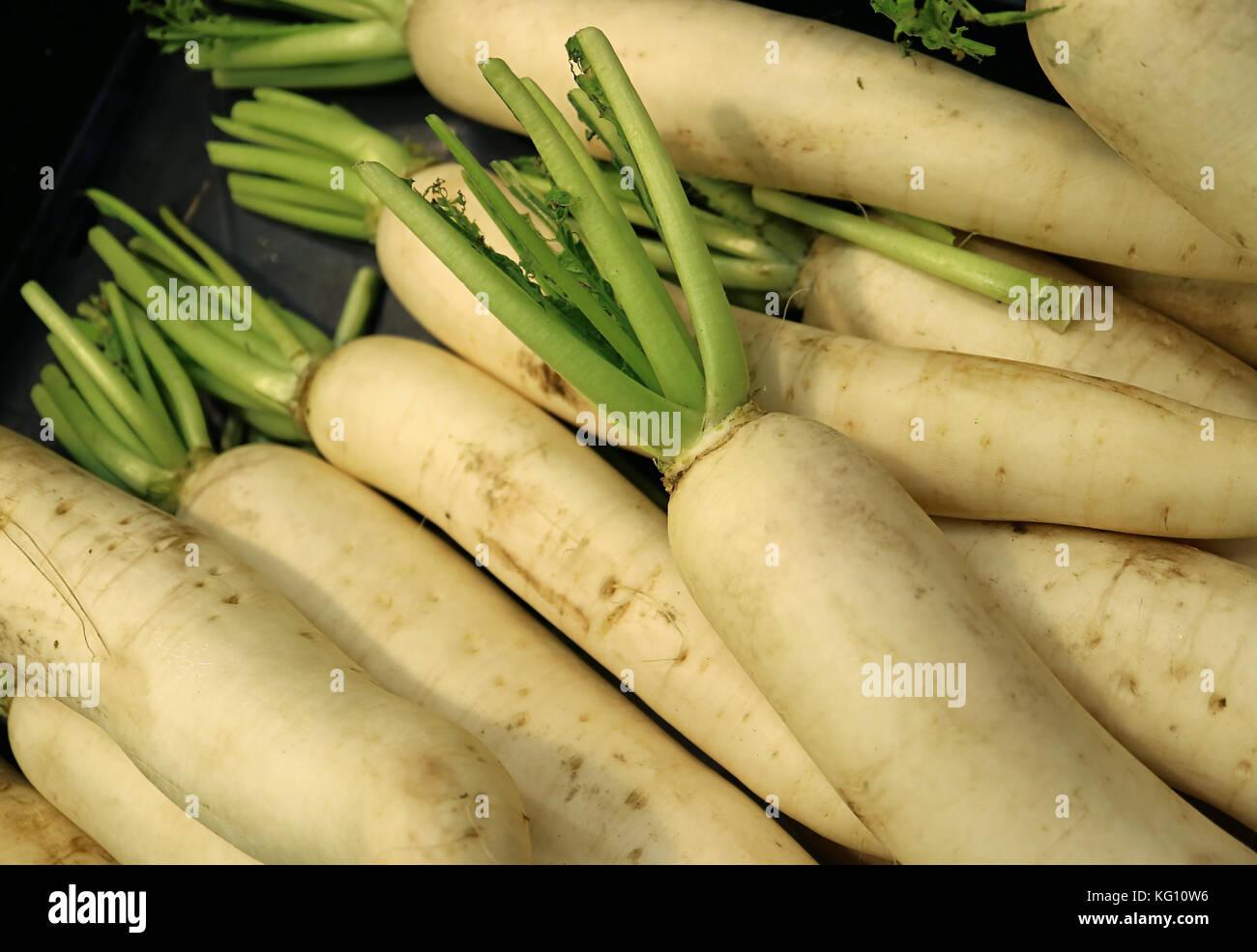 Heap of White Radish or Daikon Radish, with Selective Focus - Stock Image
