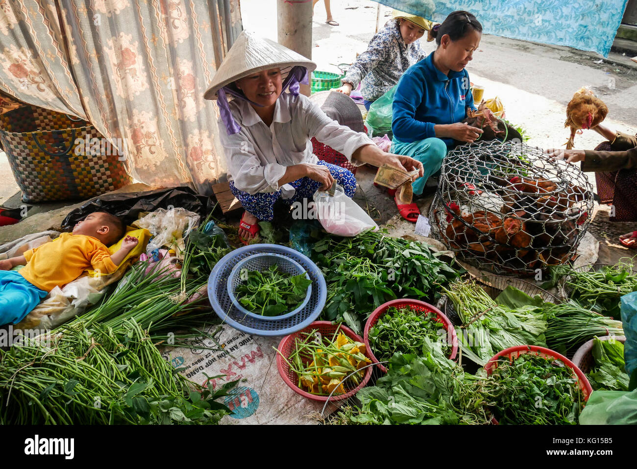 Mature females selling vegetables and live chickens, small baby sleeps in background. Thanh Toan Village market, - Stock Image