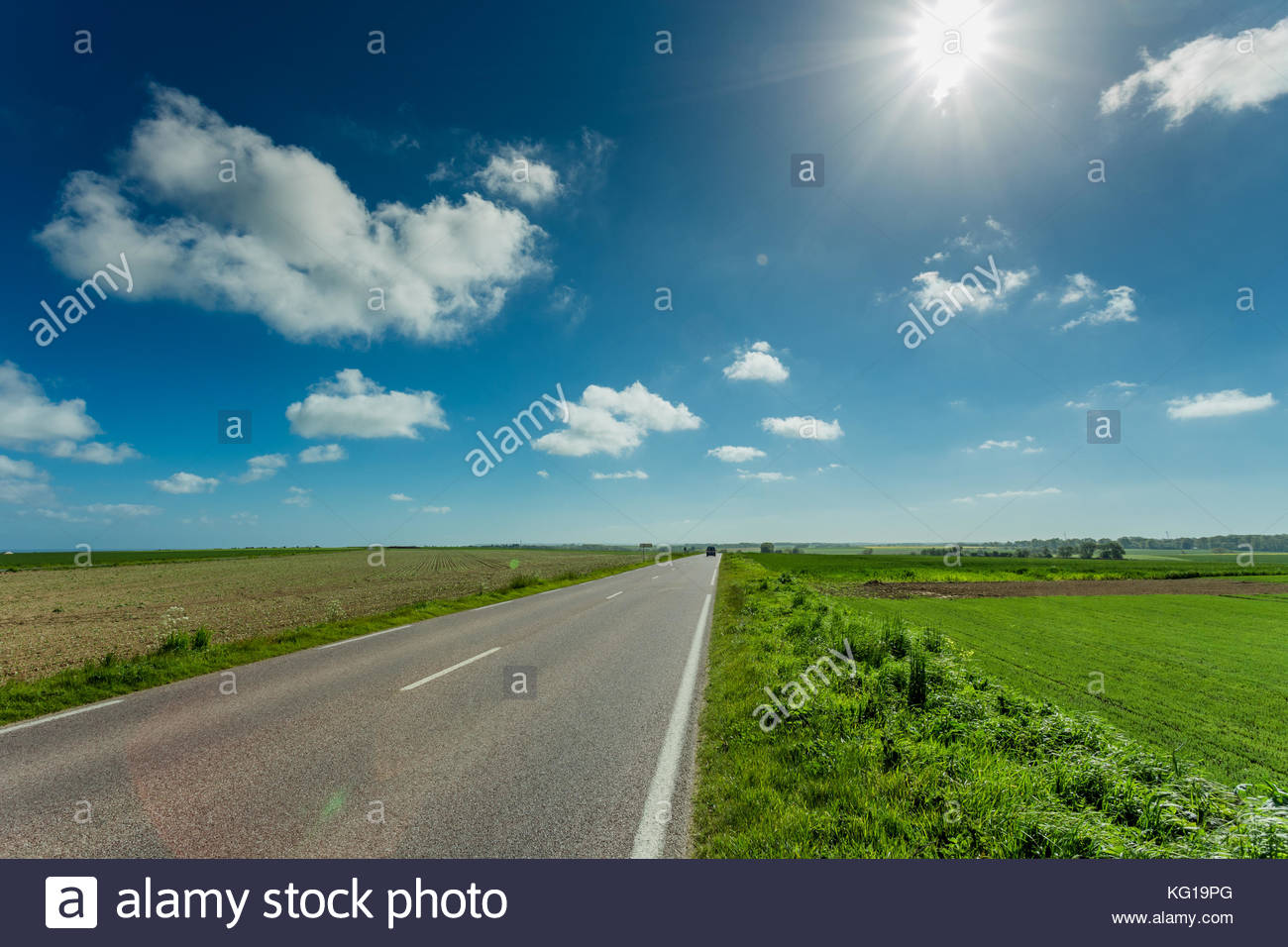 Empty asphalt country road passing through green and flowering agricultural fields. Countryside landscape on a sunny - Stock Image