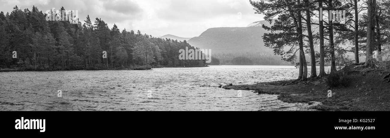 Loch an Eilein, Aviemore, Cairngorms National Park, Scotland, United Kingdom, Europe - Stock Image