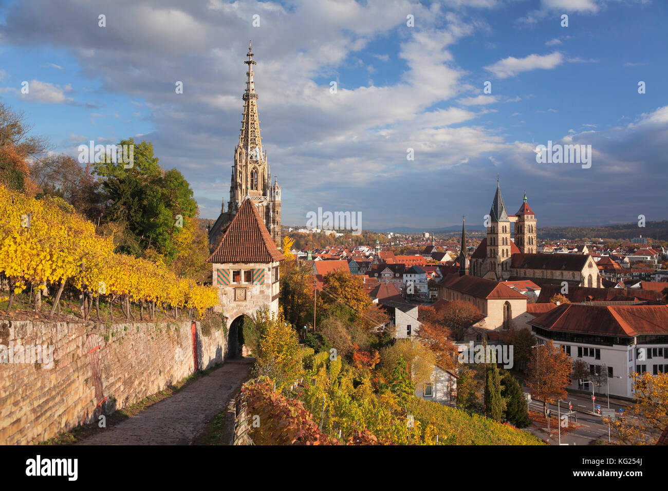 View from vineyards to Esslingen with St. Dionys church and Frauenkirche church, Esslingen, Baden-Wurttemberg, Germany, - Stock Image