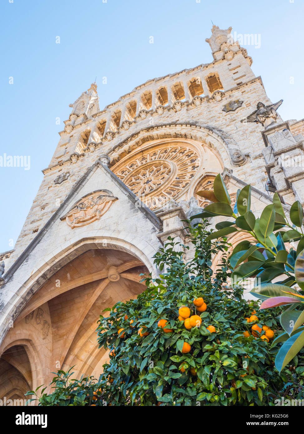 Church and orange trees, Soller, Mallorca, Balearic Islands, Spain, Mediterranean, Europe - Stock Image