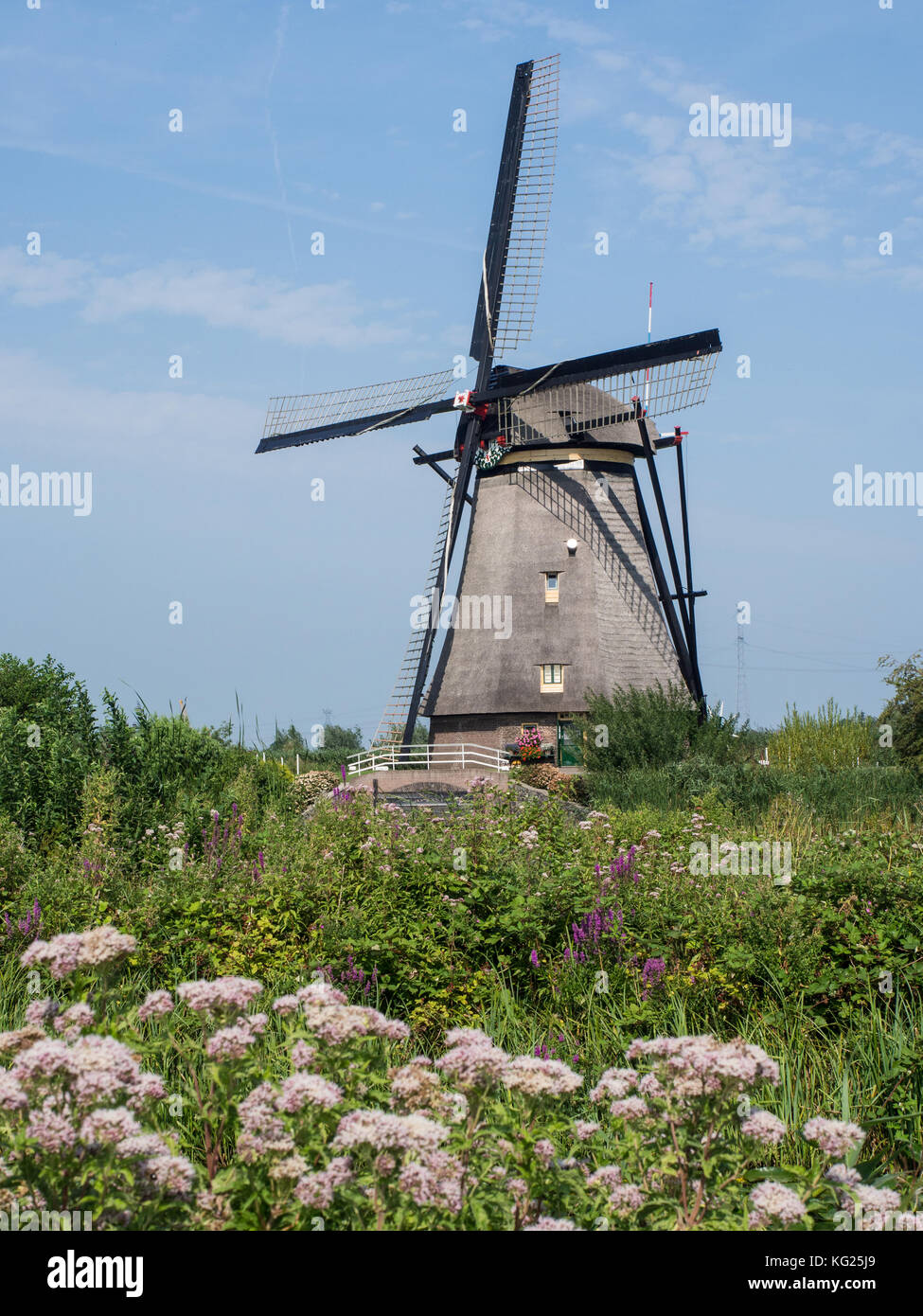 Windmill, Kinderdijk, UNESCO World Heritage Site, Netherlands, Europe - Stock Image