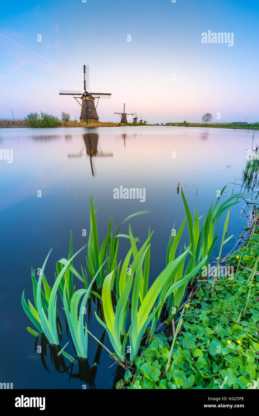 Windmills on the canal and grass in the foreground, Kinderdijk, UNESCO World Heritage Site, Molenwaard municipality, - Stock Image