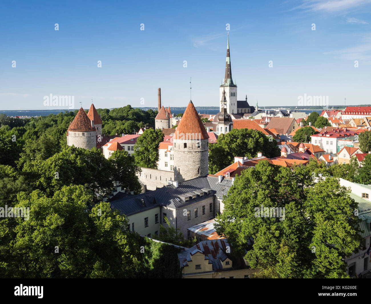 Cityscape view from the Patkuli viewing platform, Old Town, UNESCO World Heritage Site, Tallinn, Estonia, Baltic - Stock Image