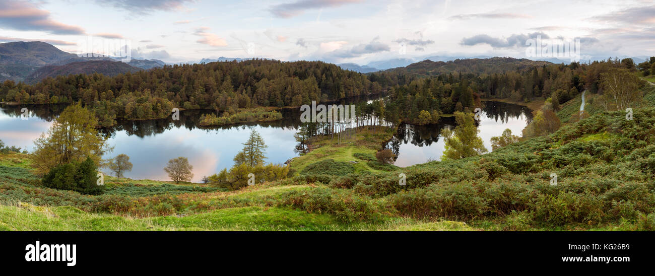 Tarn Hows near Hawkshead, Lake District National Park, UNESCO World Heritage Site, Cumbria, England, United Kingdom, - Stock Image