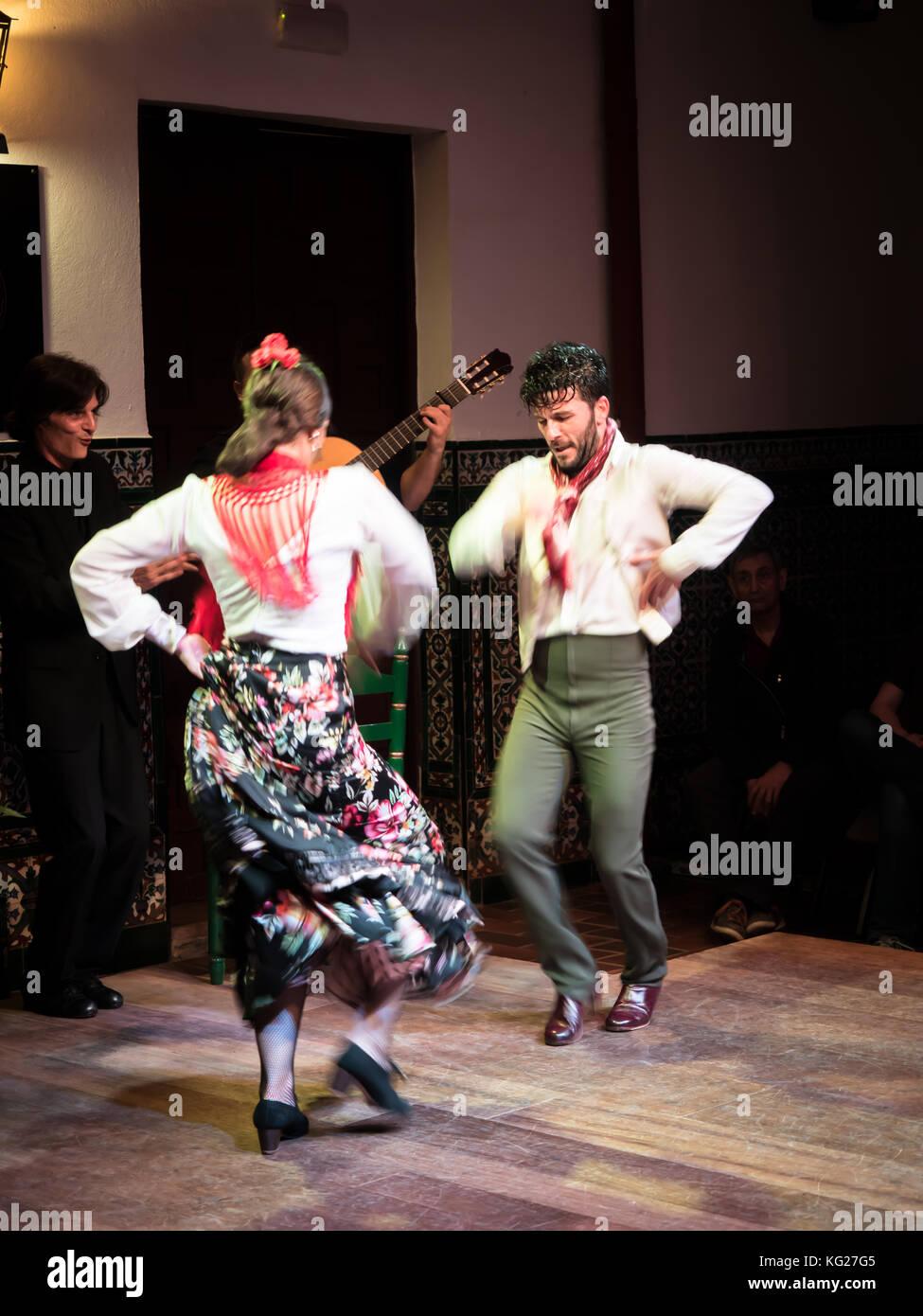 Flamenco dancers and musicians, La Casa del Flamenco, Seville (Sevilla), Andalucia, Spain, Europe - Stock Image