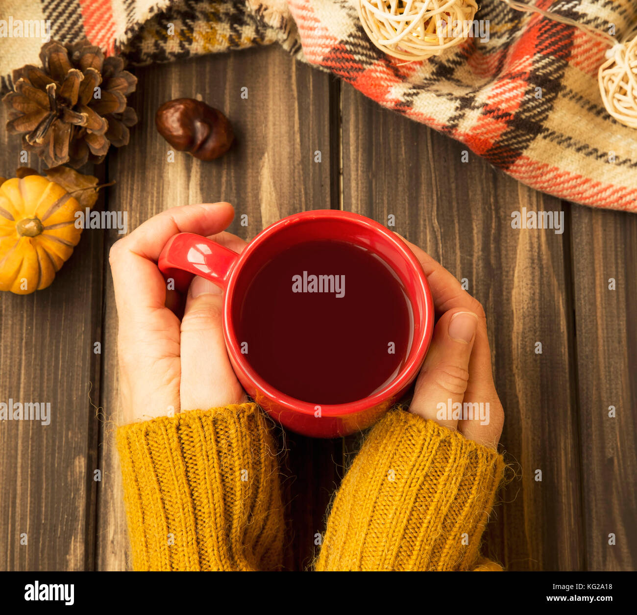 Woman Hands Holding Cup Of Hot Chocolate Autumn Cosy Setting Top