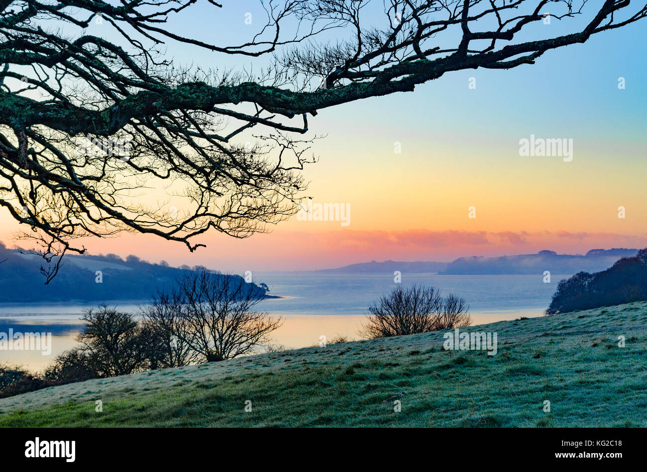 view towards the carrick roads on the river fal near truro in cornwall, england, britain, uk. - Stock Image