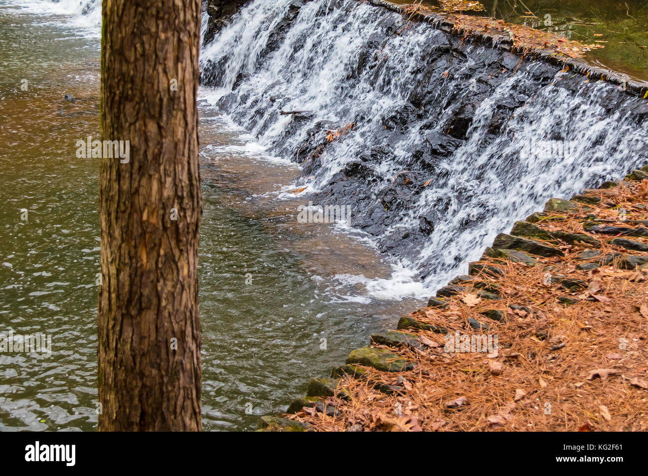 Spillway waterfall and the tree in the Lullwater Park, Atlanta, USA Stock Photo
