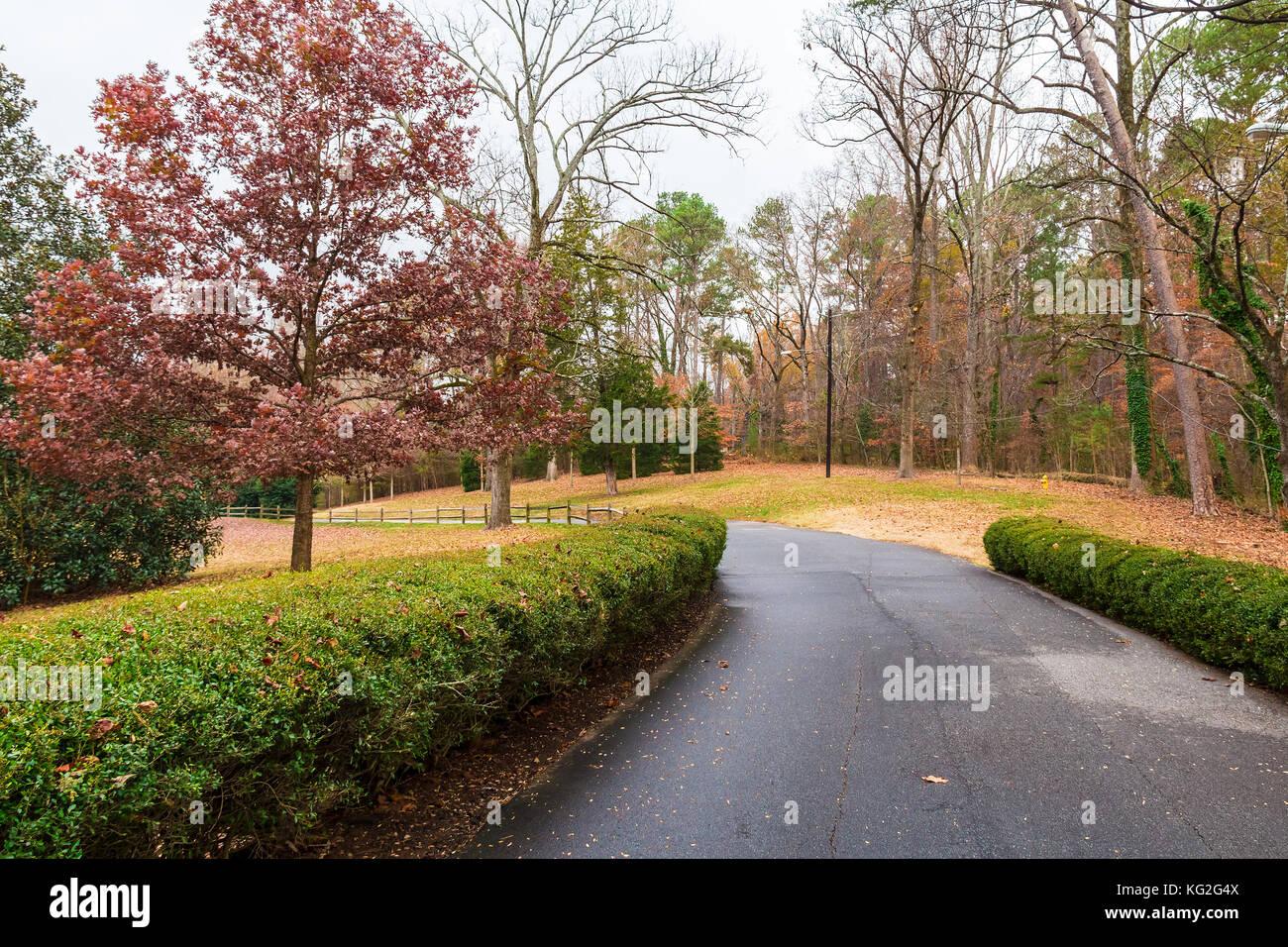 Asphalt road in autumn Lullwater Park, Atlanta, USA Stock Photo