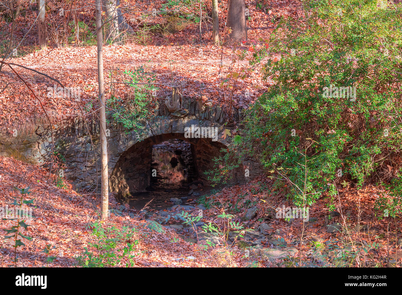 The stone bridge over the Ernest Richardson creek in the Lullwater Park in sunny autumn day, Atlanta, USA Stock Photo