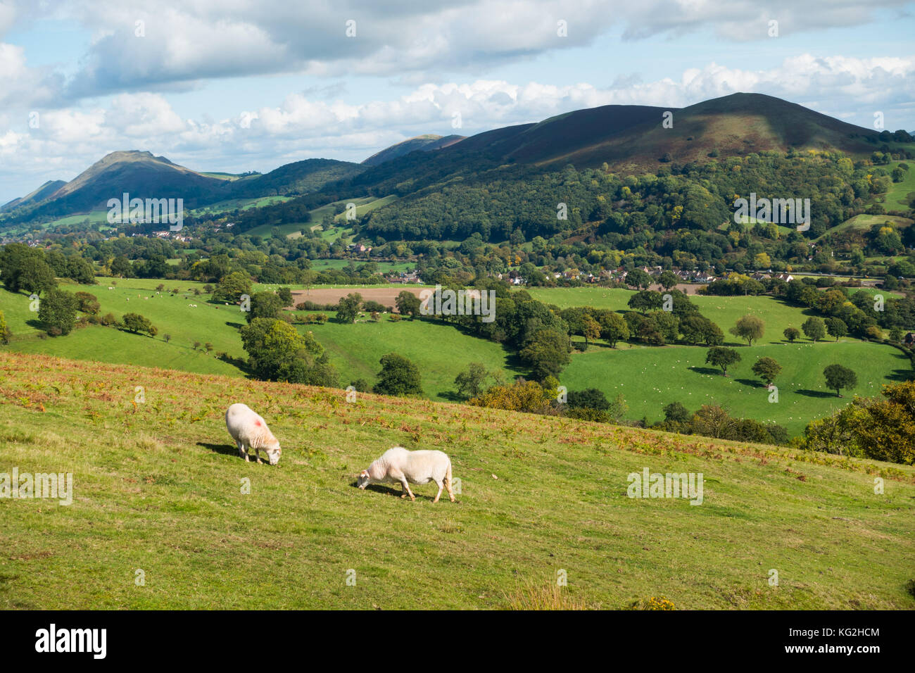 View from the Long Mynd, Shropshire, England, towards Ragleth, Helmeth and Caer Caradoc Hills - Stock Image