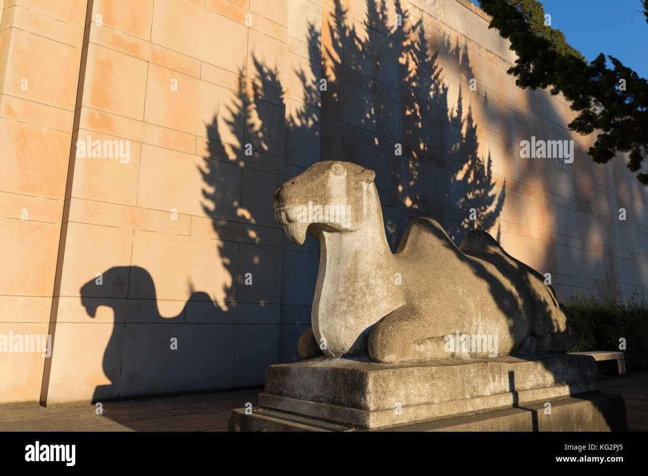 Seattle, Washington: Camel Sculpture casts a shadow on the Seattle Asian Art Museum at sunset. Stock Photo